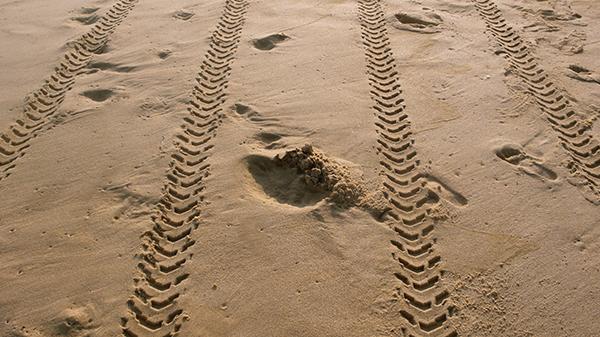 sabbia-orme2